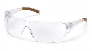 Billings Clear Anti-Fog Lens with Clear Temples